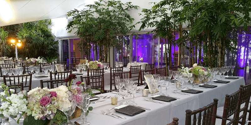 Miami beach botanical garden miami beach wedding venue - Miami beach botanical garden wedding ...