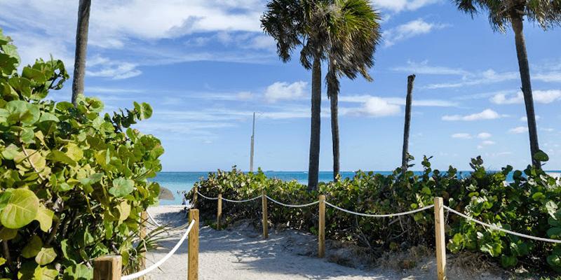 Best Parks In Miami Beach